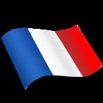 French_Flag_Icon